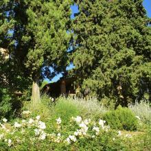 Il giardino di Mille Primavere
